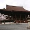 9  桜の名所 三井寺