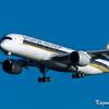 羽田空港でシンガポール航空 A350-900を撮る