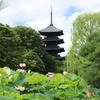 京都「東寺」ハス 2021