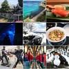 Instagram!当初フォロワーたった2人の「インスタ初心者」が、約1ヶ月で100人に!これまでやったことをまとめてみた!