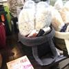 山陽百貨店アトリエザッパに行ってきました。