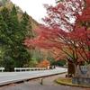 加能八景の一つ「荒俣峡」の紅葉