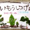 葦毛湿原散策4月いるか自然学校