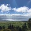 コストコ10  2020年ハワイ島旅行記