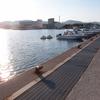 上磯漁港で北海道初ハゼ。