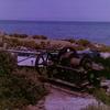 Rollei XF35と変なフィルムで友ヶ島
