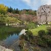 三景園の里池(広島県三原)