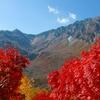 ツアーがおすすめ!立山黒部アルペンルートはさまざまな標高ごとのキレイな紅葉が一度で楽しめます