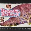 桜の墓参 2021年