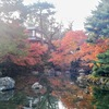 円山公園の紅葉②観光21R...過去20181201京都