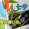【笹の葉さらさら】七夕の短冊とお星さまに願いを