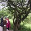 マリオ神父様と行く「レジオ・マリエ発祥の地ダブリンとアイルランドの教会・遺跡を訪ねる8日間」第3日