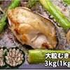 【ふるさと納税・千葉県 長生村】C01-502 大粒むき身牡蠣 3kg(15000円)