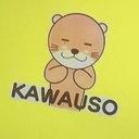 a.k.a.kawauso