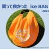 2021年夏 買って良かった氷嚢 ーBEAMSGOLFの ice BAG
