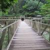 京都の秘境駅!2つの保津峡駅から小倉山を越え嵐山へ