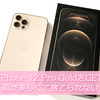 iPhone 12 Pro Godd を購入。イヤホンと電源アダプタが同梱されなくなったけどやっぱり箱が美しくて捨てられない