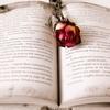 【TOEICでも使える】英語力を強化する大学受験参考書10選