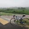 夏男と大平山