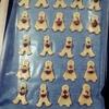 初心者の手作りクッキー