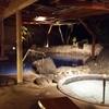 静岡発 観光モデルコース(1泊2日 南伊豆 竜宮窟~弓ヶ浜温泉~羅漢の芸術的なランチ)
