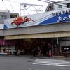 創業明治30年!明石の老舗寿司。「菊水鮓」@兵庫明石