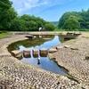 長岡公園の池(栃木県宇都宮)