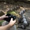 使い道に合わせてカスタマイズできる多機能ロボ「CellRobot」