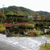 11月の高尾駒木野庭園に行ってきました