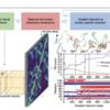 機械学習でタンパク構造予測は、本当にできるのか?