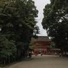 京都旅行記その5。