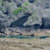 具志川グスクの池(仮称)(沖縄県具志川)