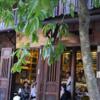 【ベトナム・ホイアン:旧市街のカフェ】街角のカフェは、個性的でお洒落でした♪