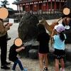 5歳の娘、奈良公園でシカと戯れる その1