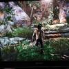 PS4でアドベンチャーゲームをやるならアンチャーテッドで決まり!