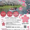 23日から松崎の那賀川で花見舟体験が始まります