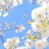 春アニメ2020|注目タイトルまとめ