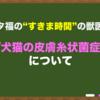 """【犬猫の皮膚糸状菌症】~""""すきま時間""""の獣医学~"""