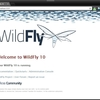 WildFlyのインストール
