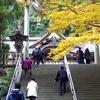日本最古の神社 大神神社 (奈良)