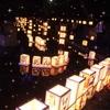茨城県古河市の夏の風物詩、夢あんどんと夕涼みに行ってきました!