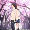 【ネタバレ全開】アニメ映画『君の膵臓をたべたい』のココがいい!!