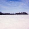 【一日一枚写真】冬の野幌森林公園 Part.6【スマホ】