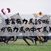 【NHKマイル】【京都新聞杯】【新潟大賞典】なんとか61.5%まで盛り返すこのまま70%へ[買える有力馬]