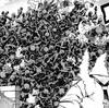 僕のヒーローアカデミア No.230 『サッドマンズパレード』感想