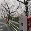 多摩川桜百景 -7. 桜坂と六郷用水-
