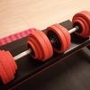 【筋トレ日誌:vol19】ダンベル最大重量30kgで背中を!二頭筋も追い込む!