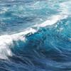 テクノロジーの波に流されるもの、流されないもの