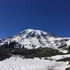 【アメリカ】マウントレーニア国立公園のハイキングとシアトルの街の観光