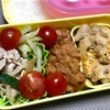 本日のヨメさん弁当【2019.04.10】~親子丼の具・豚しゃぶの和え物~